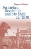 Großmann, Thomas, Fernsehen, Revolution und das Ende der DDR