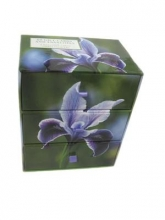 Snowdrop Simply Flowers - Three-drawer Card Box