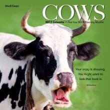 Cows 2017 Calendar