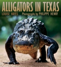 Hayes, Louise Alligators of Texas