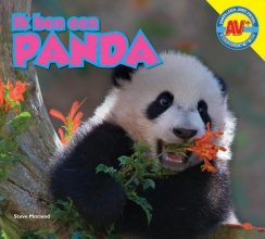 Steve  Macleod Panda