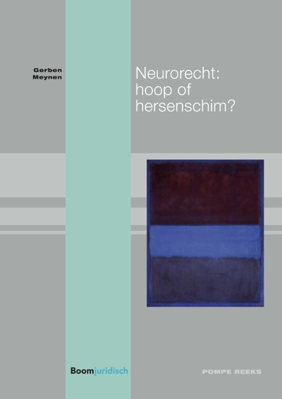 Gerben Meynen,Neurorecht: hoop of hersenschim?