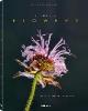 Richard Fischer,Tribute to Flowers: Plants Under Pressure