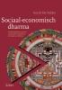 Gerrit De  Vylder,Sociaal-economisch dharma