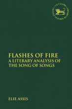 Elie Assis Flashes of Fire