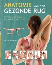 Philip  Striano Anatomie van een gezonde rug