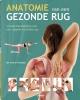<b>Philip Striano Dr.</b>,Anatomie van een gezonde rug