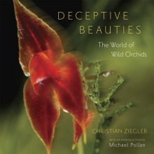 Ziegler, Christian Deceptive Beauties