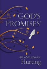 Jack Countryman God`s Promises for When You are Hurting