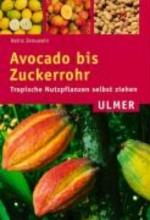 Jenuwein, Heinz Avocado bis Zuckerrohr