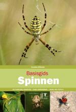 Caroline Elfferich , Basisgids Spinnen