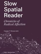 Carolyn Strauss , Slow Spatial Reader