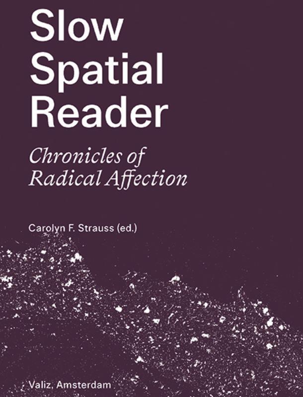 Carolyn Strauss,Slow Spatial Reader