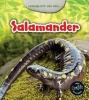 Charlotte  Guillain ,Levensloop van een salamander