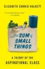 Elizabeth Currid-Halkett, The Sum of Small Things