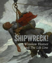 Foster, Kathleen A. Shipwreck! Winslow Homer and