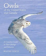 Wayne Lynch Owls of the United States and Canada