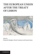 The European Union After the Treaty of Lisbon