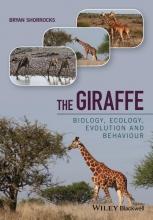 Bryan Shorrocks The Giraffe