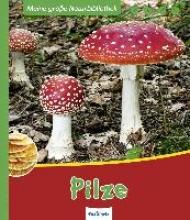 Zysk, Stefanie Meine große Naturbibliothek: Pilze