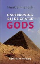 Henk Binnendijk , Onderkoning bij de gratie Gods