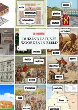 Ls Coronalis , Duizend Latijnse woorden in beeld