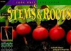 Schwartz, David M.,Plant Stems & Roots