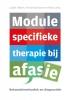 Judith Feiken, Anna Hüttmann, Petra Links,Module specifieke therapie bij afasie