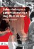 Jannelien  Wieland, Erica  Aldenkamp, Annemarie van den Brink,Behandeling van pati?nten met een laag IQ in de GGZ