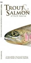 Kavanagh, James Trout & Salmon