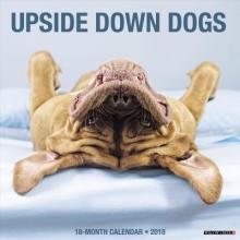 Upside Down Dogs 2018 Calendar