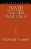 Boswell, Marshall, Understanding David Foster Wallace