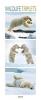 , Wildlife Triplets 2018 PhotoArt Vertikal Kalender
