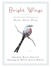 Collins Bright Wings