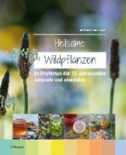 Hecker, Frank,   Hecker, Katrin Heilsame Wildpflanzen