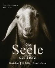 Remy-Schwabenthan, Sabine Die Seele der Tiere