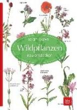 Caspari, Claus Wildpflanzen neu entdecken
