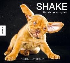 Davidson, Carli Shake - Hunde geschüttelt