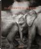 Schmeisser, Joachim,Elephants in Heaven