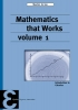 <b>Maarten de Gee</b>,Mathematics that Works 1