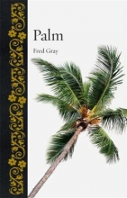 Fred,Gray Palm