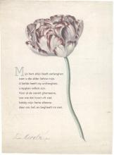 Anonymus , 10 poëziekaarten plint met gedicht `Mijn hert`