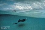 David Doubilet, Water Light Time Postcards