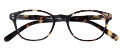 G59925 , Leesbril Cambridge G59900 Bruin 2.5