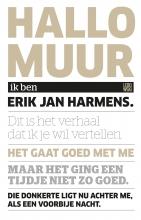 Erik Jan  Harmens Hallo, muur
