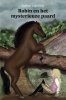 <b>Evelien  Lagerweij</b>,Robin en het mysterieuze paard