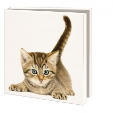 Wmc819 , Notecard pak 10 stuks 15x15 cm franciens katten