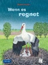 Müller, Thomas Wenn es regnet
