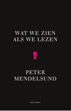 Peter  Mendelsund Wat we zien als we lezen