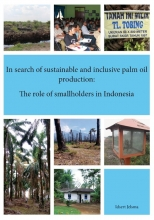 Idsert Jelsma , In search of sustainable and inclusive palm oil production